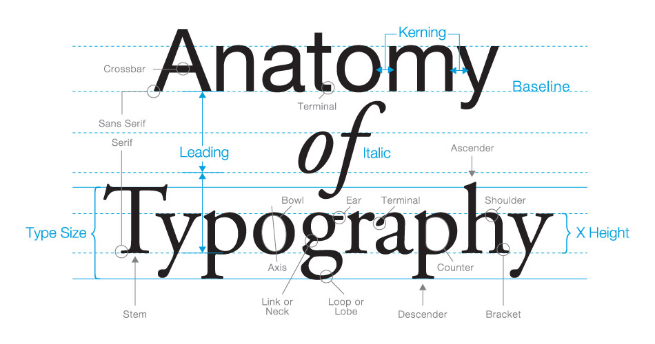 Anatomy of a typography graphic